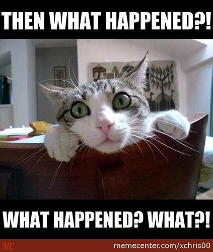 curiosity-killed-the-cat_o_2513311