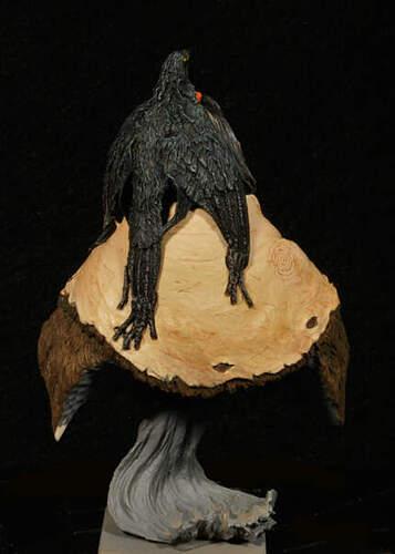 Blackfoot_08