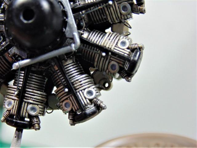 DSC00342 (Small)