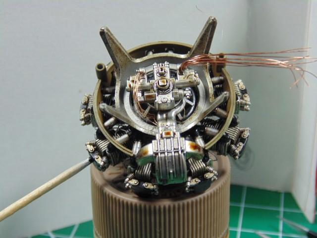 DSC00341 (Small)
