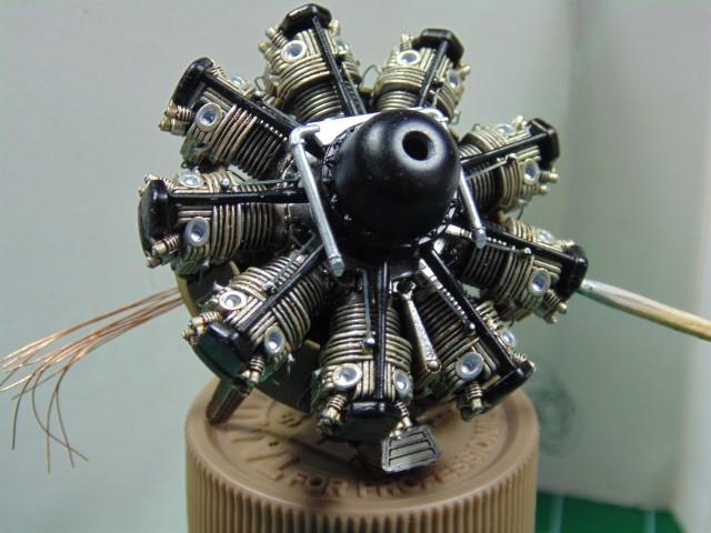 DSC00339 (Small)