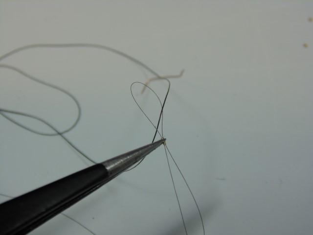 DSC01210 (Small)